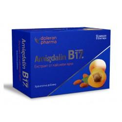 Амигдалин (Витамин B17) - екстракт от кайсиеви ядки